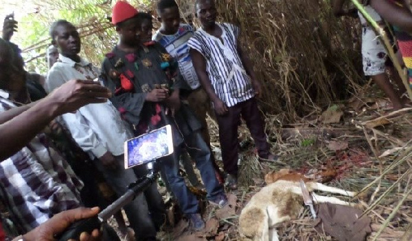Nkoranza North: Youths Group Invoke Curses On Strangers Who Take Part In EC Registration Exercise